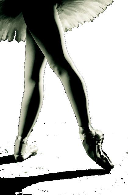 Ballet Yuma Preparing for 20th Anniversary Season!